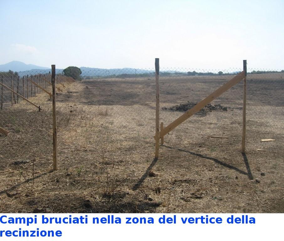 """Campi bruciati nella zona della recinzione """"Ecovillage"""""""